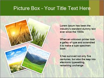 0000062498 PowerPoint Templates - Slide 23