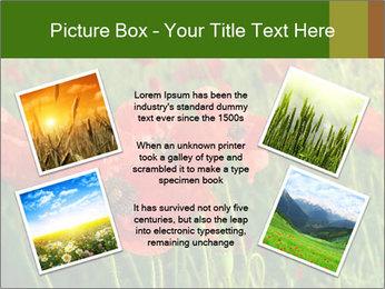 0000062498 PowerPoint Templates - Slide 24