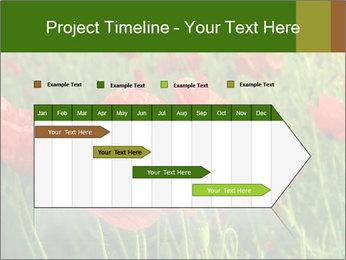 0000062498 PowerPoint Templates - Slide 25