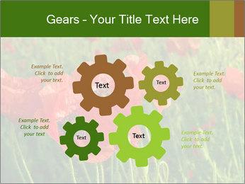 0000062498 PowerPoint Templates - Slide 47