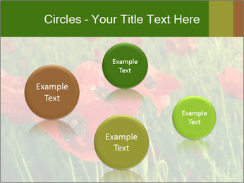 0000062498 PowerPoint Templates - Slide 77