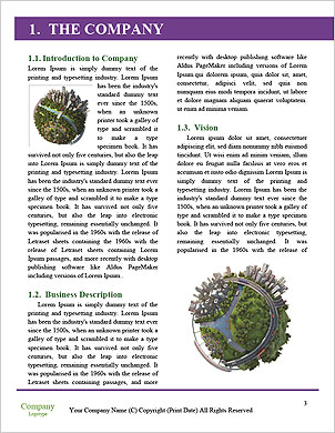 0000062502 Word Template - Page 3