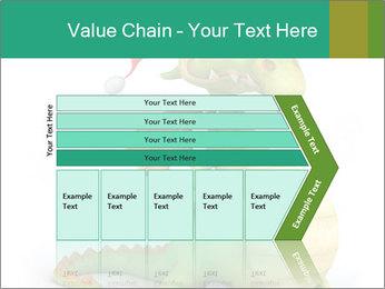 0000062507 PowerPoint Templates - Slide 27
