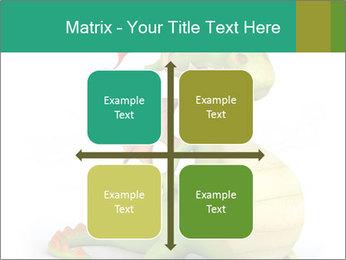 0000062507 PowerPoint Templates - Slide 37
