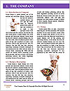 0000062521 Word Template - Page 3