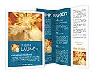 0000062527 Brochure Templates
