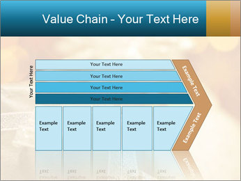 0000062527 PowerPoint Template - Slide 27