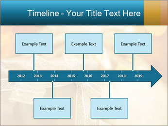 0000062527 PowerPoint Template - Slide 28