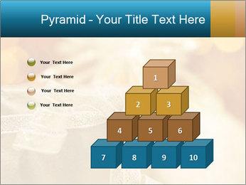 0000062527 PowerPoint Template - Slide 31
