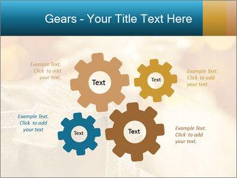 0000062527 PowerPoint Template - Slide 47