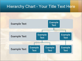 0000062527 PowerPoint Template - Slide 67