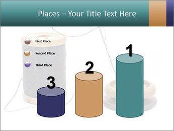 0000062533 PowerPoint Templates - Slide 65