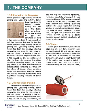0000062533 Word Template - Page 3