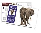 0000062535 Postcard Templates