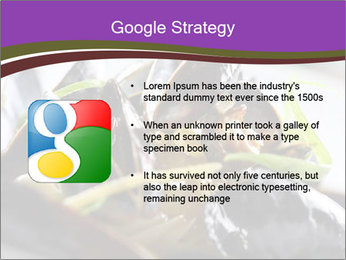0000062541 PowerPoint Templates - Slide 10
