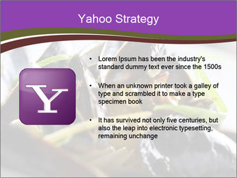 0000062541 PowerPoint Templates - Slide 11