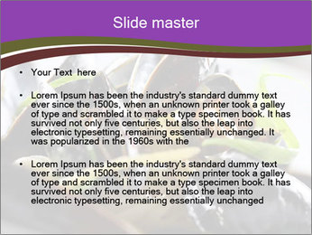 0000062541 PowerPoint Templates - Slide 2