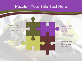 0000062541 PowerPoint Templates - Slide 43
