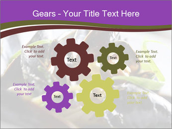0000062541 PowerPoint Templates - Slide 47