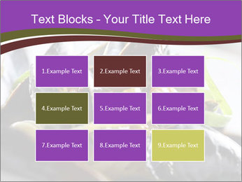 0000062541 PowerPoint Templates - Slide 68