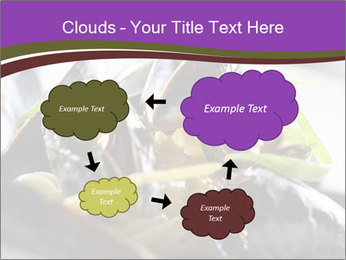 0000062541 PowerPoint Templates - Slide 72