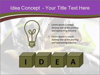 0000062541 PowerPoint Templates - Slide 80