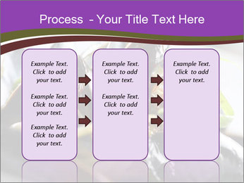 0000062541 PowerPoint Templates - Slide 86
