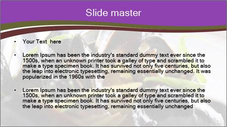 0000062541 PowerPoint Template - Slide 2