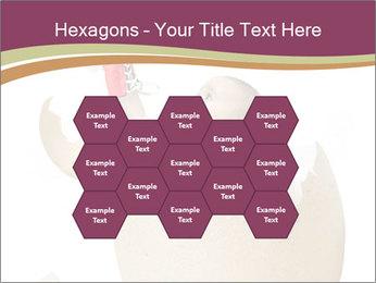 0000062543 PowerPoint Templates - Slide 44