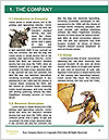 0000062559 Word Template - Page 3