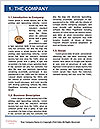 0000062560 Word Templates - Page 3