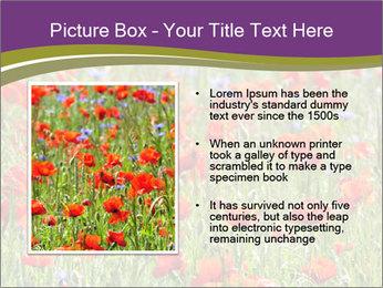 0000062561 PowerPoint Templates - Slide 13