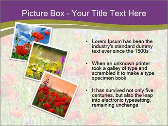 0000062561 PowerPoint Templates - Slide 17