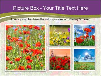 0000062561 PowerPoint Templates - Slide 19