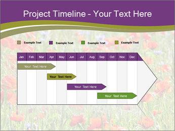 0000062561 PowerPoint Templates - Slide 25