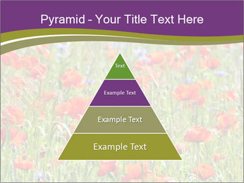 0000062561 PowerPoint Templates - Slide 30