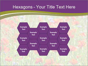 0000062561 PowerPoint Templates - Slide 44