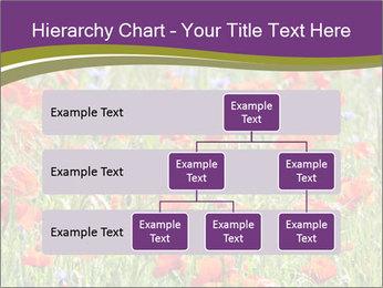 0000062561 PowerPoint Templates - Slide 67