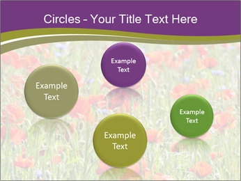 0000062561 PowerPoint Templates - Slide 77