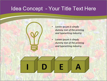 0000062561 PowerPoint Templates - Slide 80