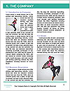 0000062563 Word Template - Page 3