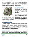 0000062572 Word Templates - Page 4