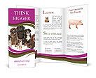 0000062574 Brochure Templates