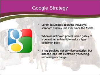 0000062574 PowerPoint Template - Slide 10