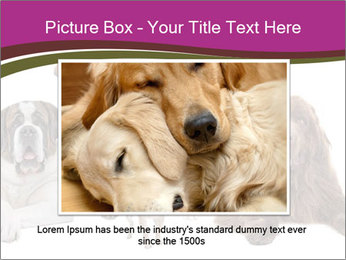 0000062574 PowerPoint Template - Slide 16