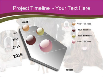0000062574 PowerPoint Template - Slide 26