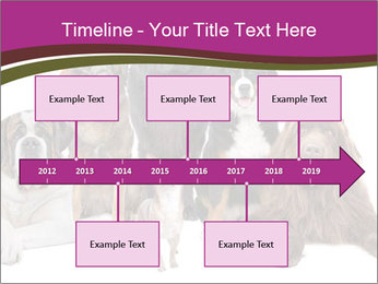 0000062574 PowerPoint Template - Slide 28