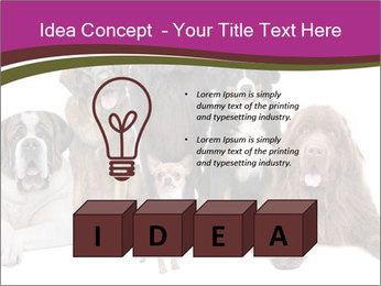 0000062574 PowerPoint Template - Slide 80