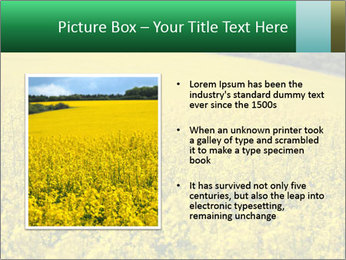 0000062576 PowerPoint Templates - Slide 13
