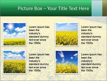 0000062576 PowerPoint Templates - Slide 14